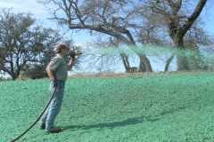 top coat over seed layer