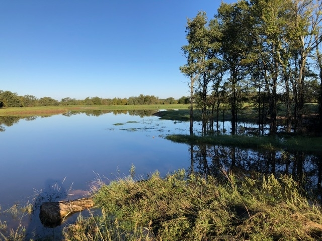 A full lake after ample rains