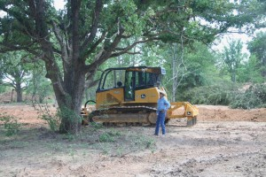 Smart land clearing - Save those big trees!