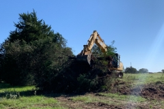 9-Clearing-trees-and-brush-1