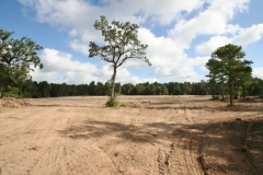 30 acres cleared (1)
